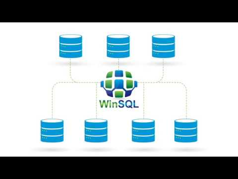 WinSQL: A Universal Database Query Tool