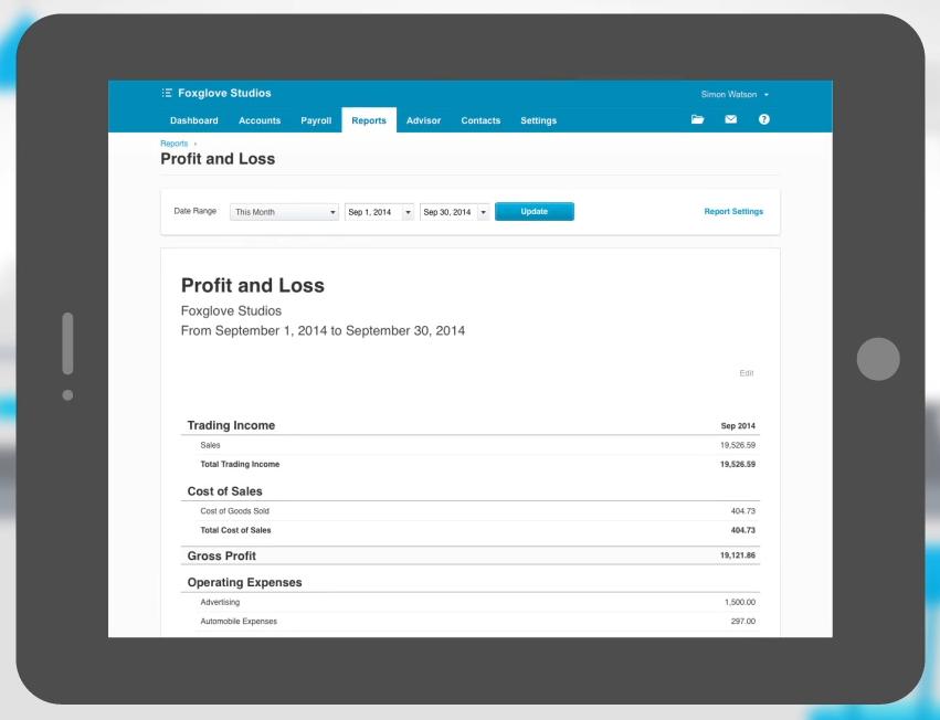 web_based_profit_and_loss